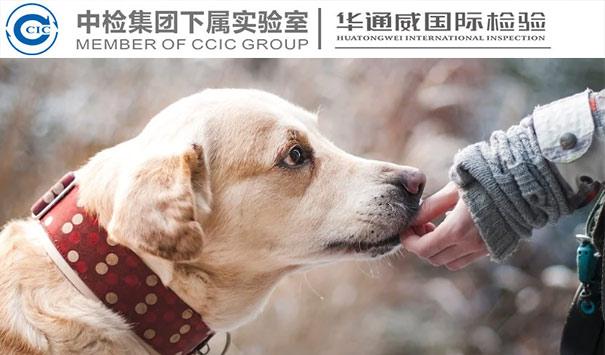 宠物用品米乐m6app官网下载报告
